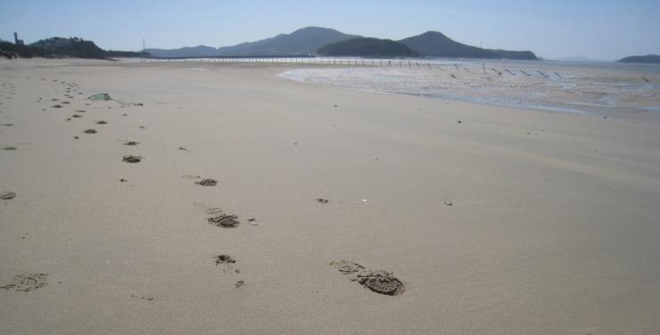 마시란 해변의 썰물때 모래사장 풍경 사진 이미지입니다.