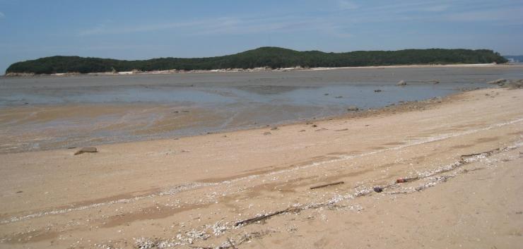 실미해변의 백사장(강가나 바닷가의 흰모래가 깔려 있는 곳) 풍경 사진 이미지입니다.