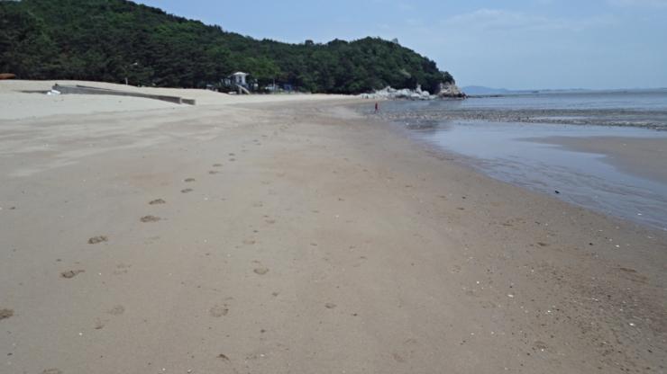 한들해변의 백사장(강가나 바닷가의 흰모래가 깔려 있는 곳) 풍경 사진 이미지입니다.