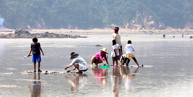용유도 마시란 해변의 갯벌에서 호미로 조개를 잡고 있는 아이들과 어른들의 모습을 찍은 사진 이미지입니다.